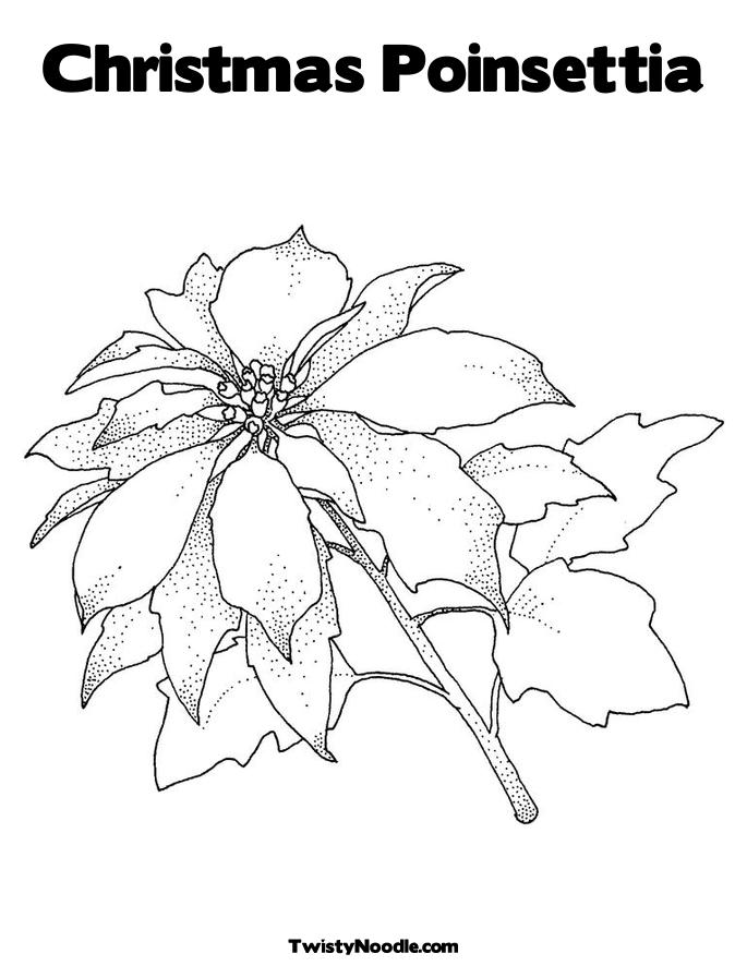Story Of Poinsettia Coloring Pages