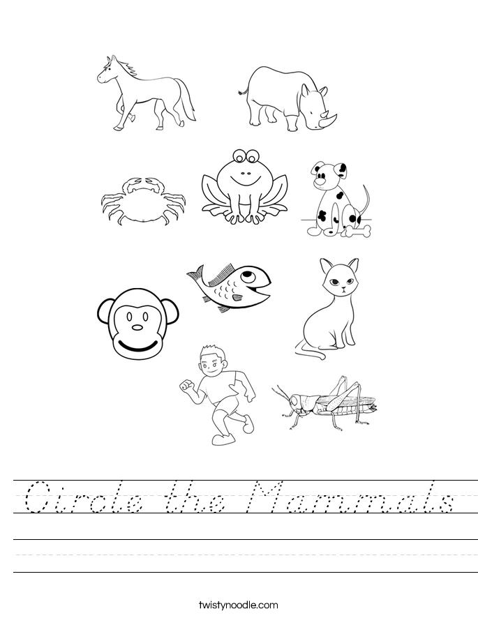 Circle the Mammals Worksheet