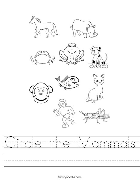 Circle the Mammals Worksheet