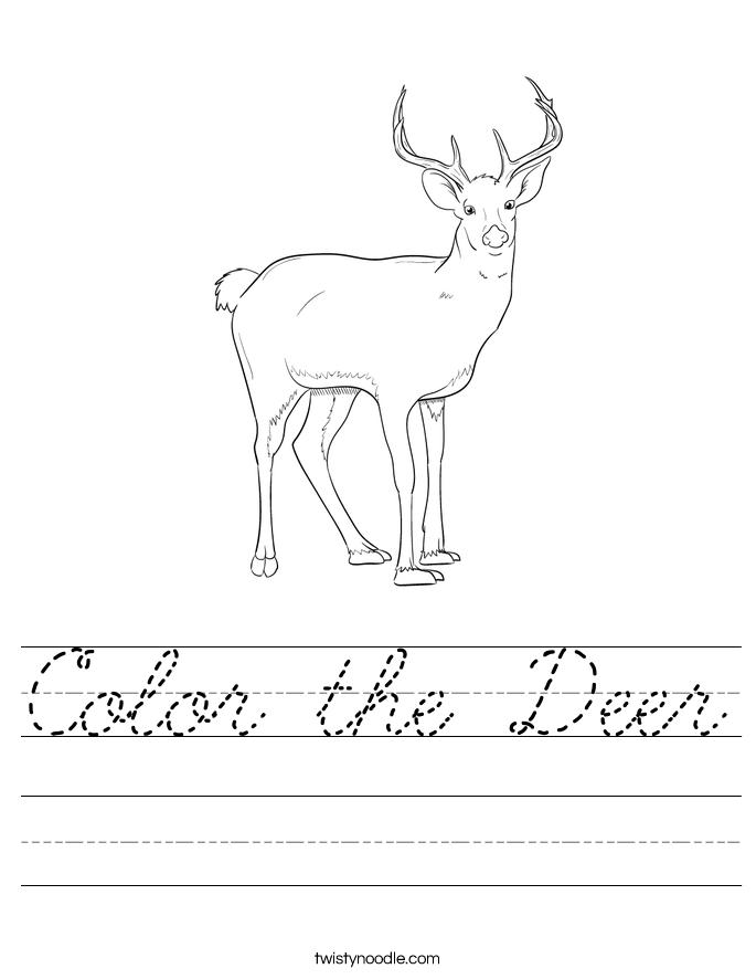 Color the Deer Worksheet