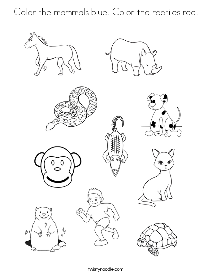 Color the mammals blue. Color the reptiles red. Coloring Page
