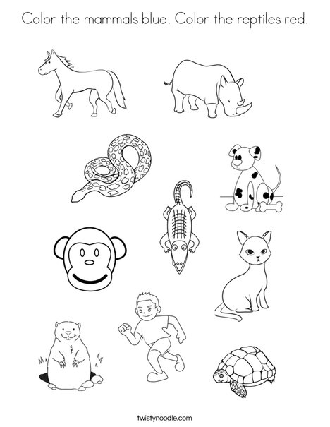 mammals coloring pages - photo#26