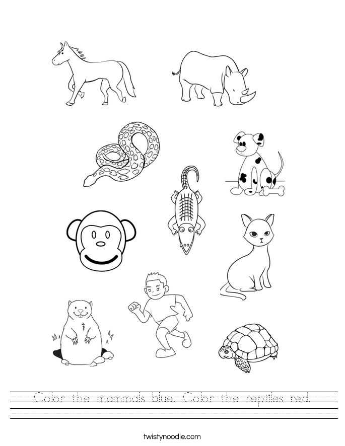 Color the mammals blue. Color the reptiles red. Worksheet