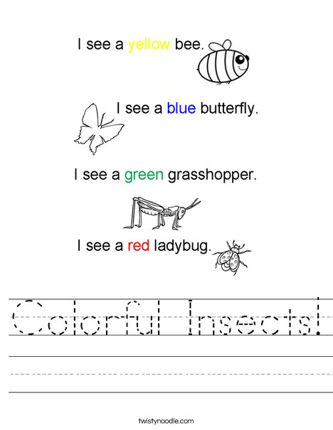 Colorful Insects! Worksheet