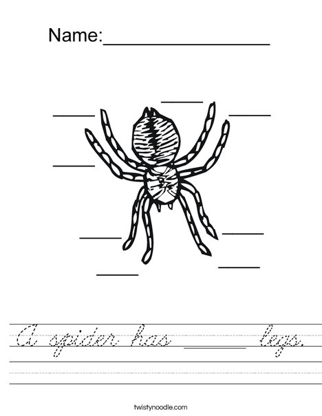 Count the spider legs Worksheet