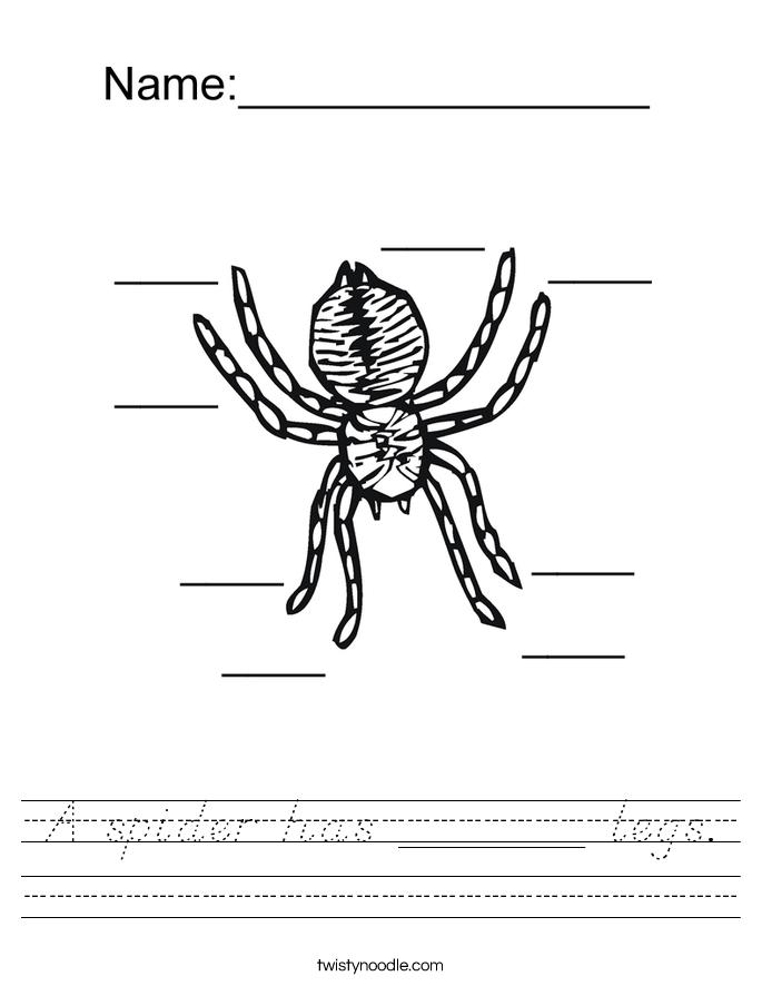A spider has ______ legs. Worksheet