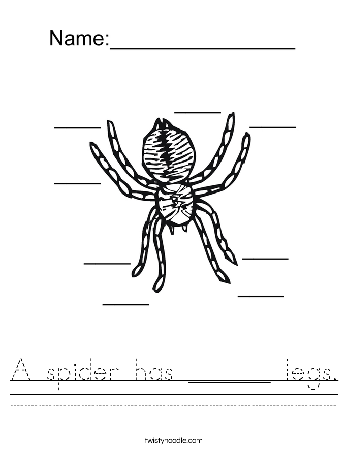 A spider has ______ legs. Worksheet