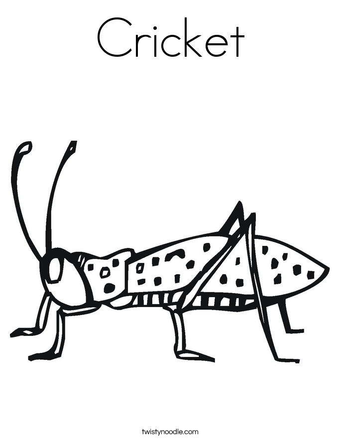 Cricket Coloring Page - Twisty Noodle