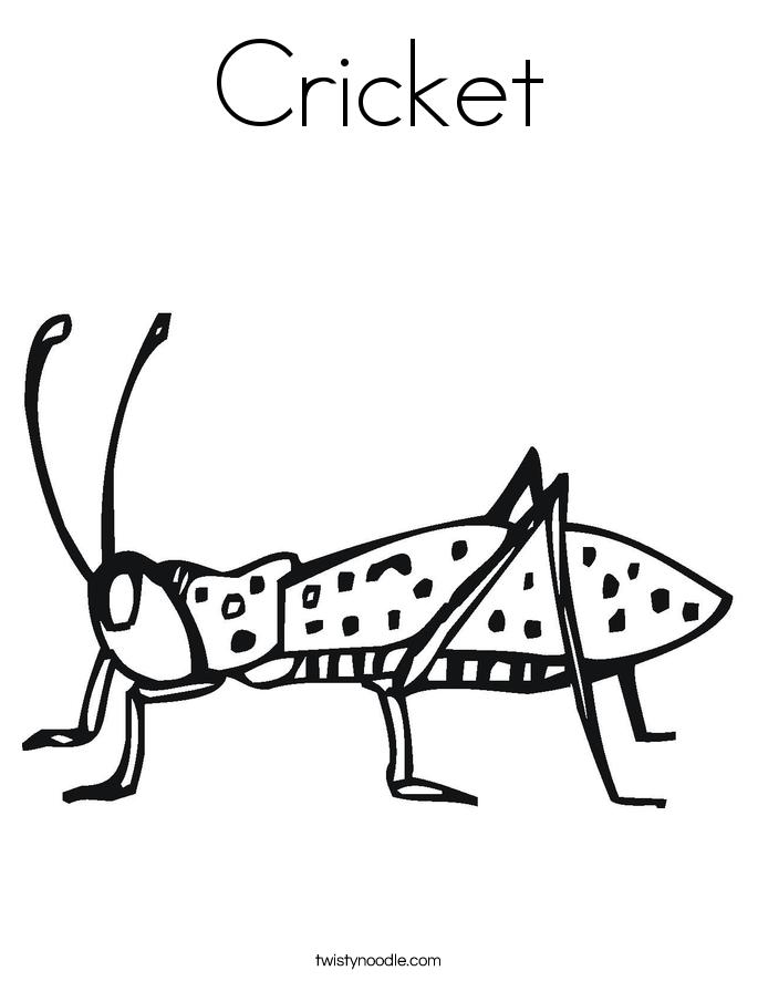 Cricket Coloring Page