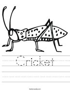 Cricket Handwriting Sheet