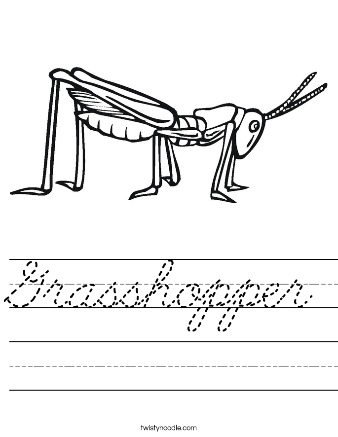Grasshopper Worksheet