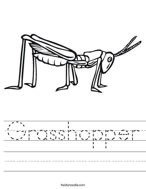 Grasshopper Worksheet
