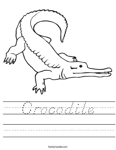 Crocodile Worksheet