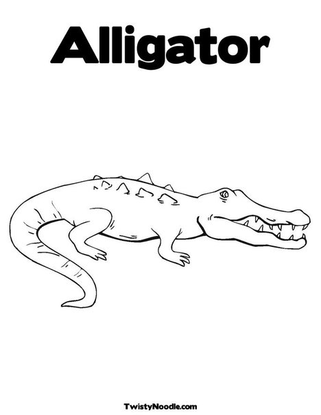 Cute alligator coloring page for Cute alligator coloring pages