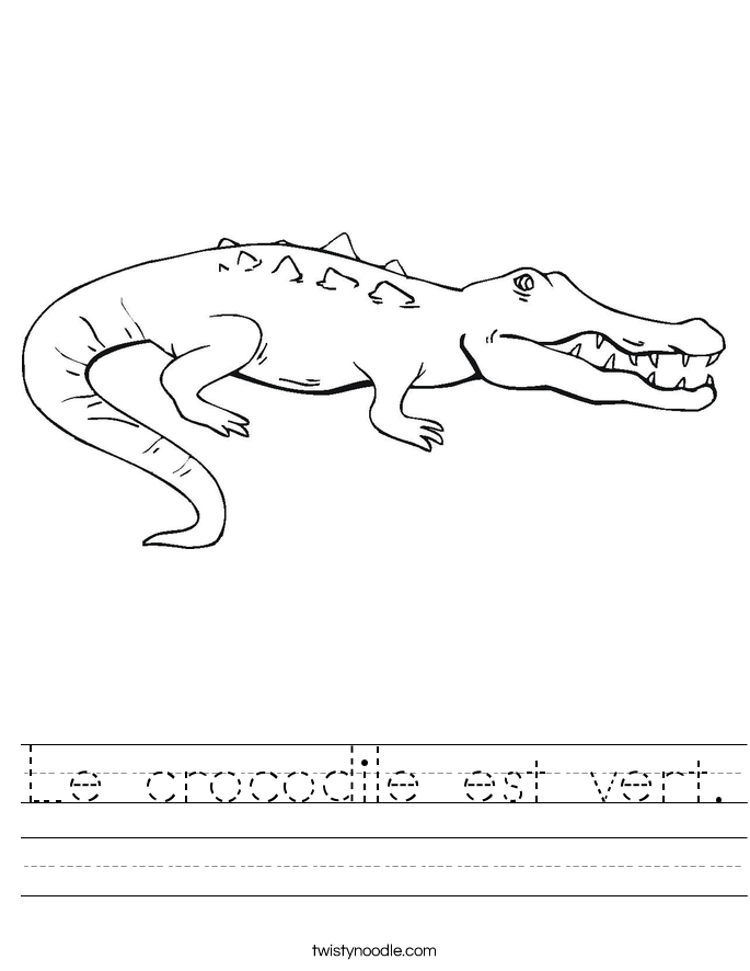 Le crocodile est vert. Worksheet