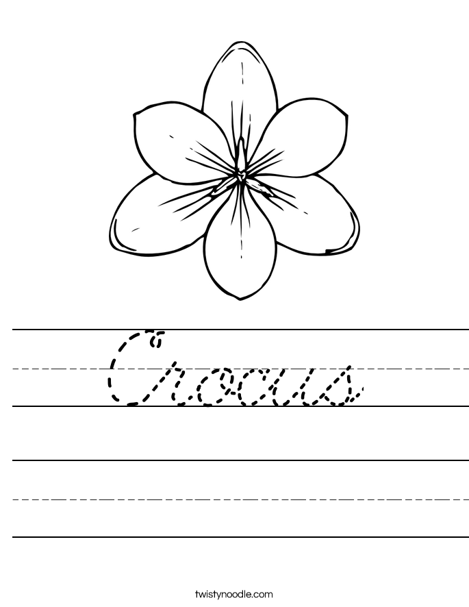 Crocus Worksheet