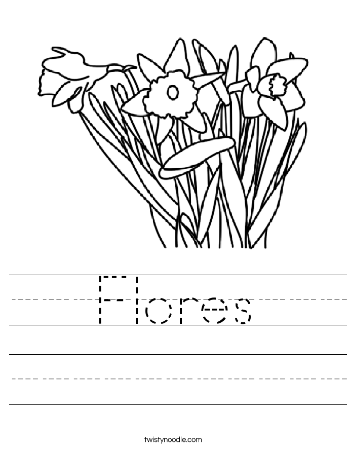 Flores Worksheet