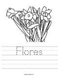 Flores Worksheet