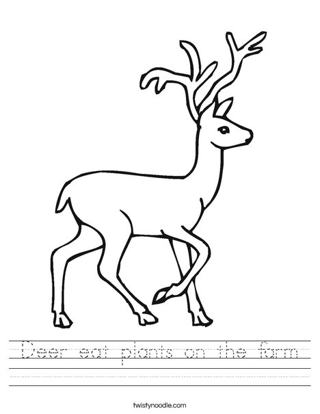 Deer Worksheet