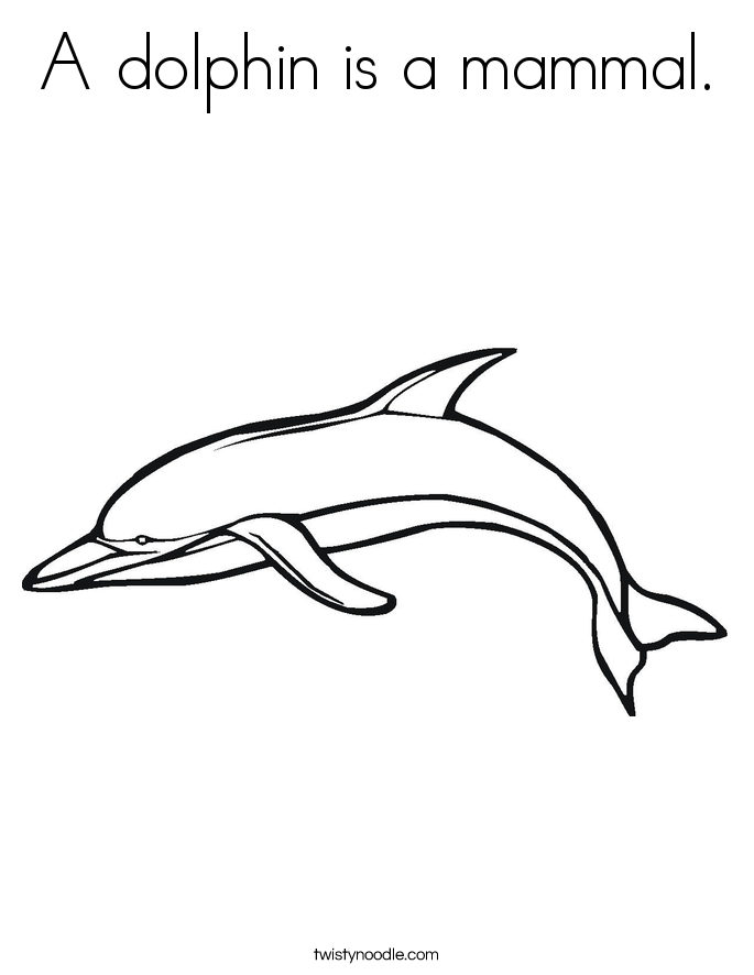 A dolphin is a mammal. Coloring Page