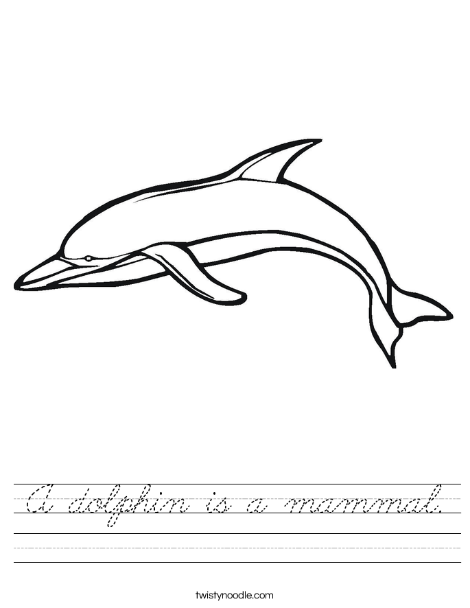 A dolphin is a mammal. Worksheet