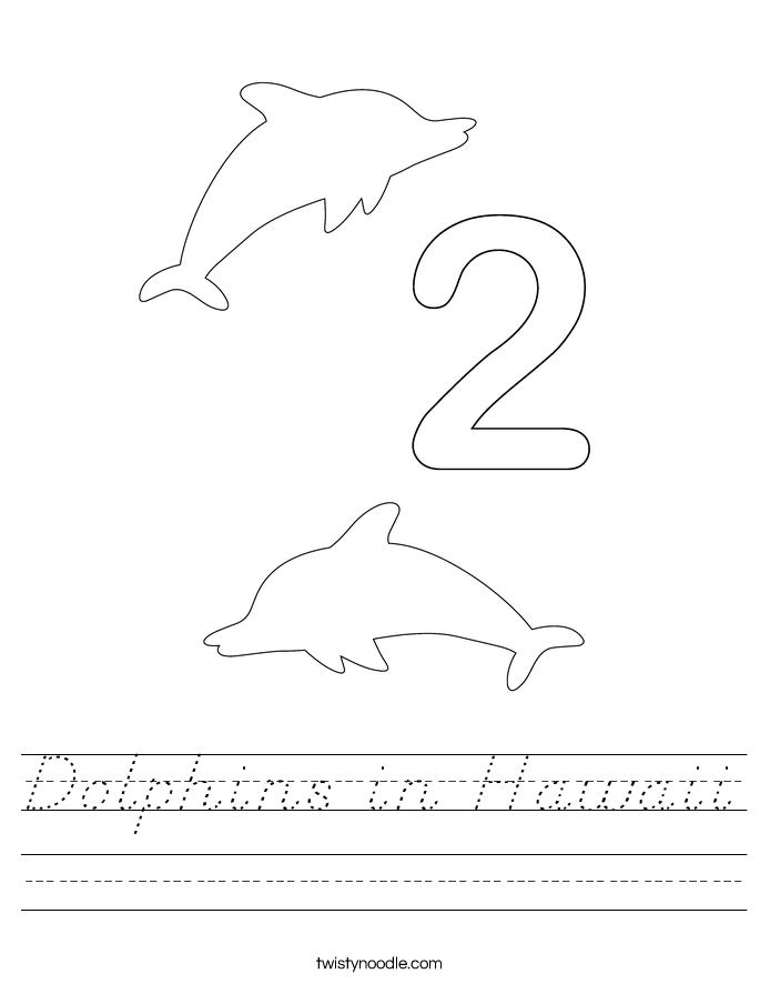 Dolphins in Hawaii Worksheet