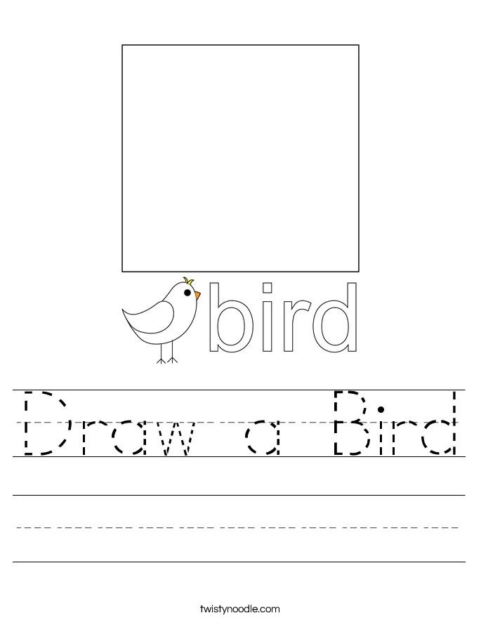 Draw a Bird Worksheet