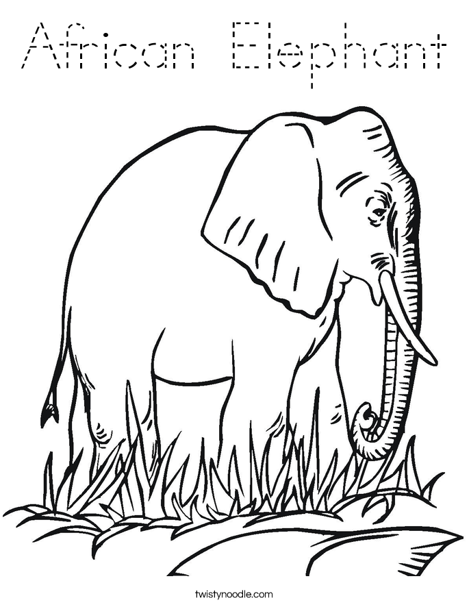 African Elephant Coloring Page Tracing Twisty Noodle