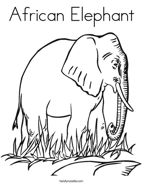 African Elephant Coloring Page - Twisty Noodle
