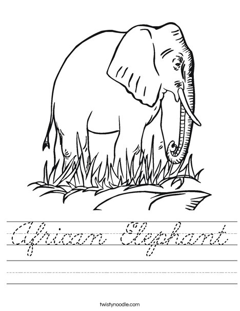 Elephant in Grass Worksheet