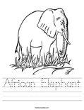 African Elephant Worksheet