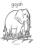 gajahColoring Page