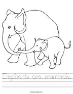 Elephants are mammals Handwriting Sheet