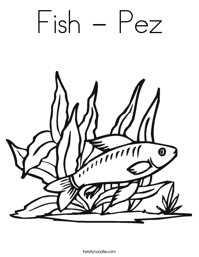 Fish - Pez Coloring Page