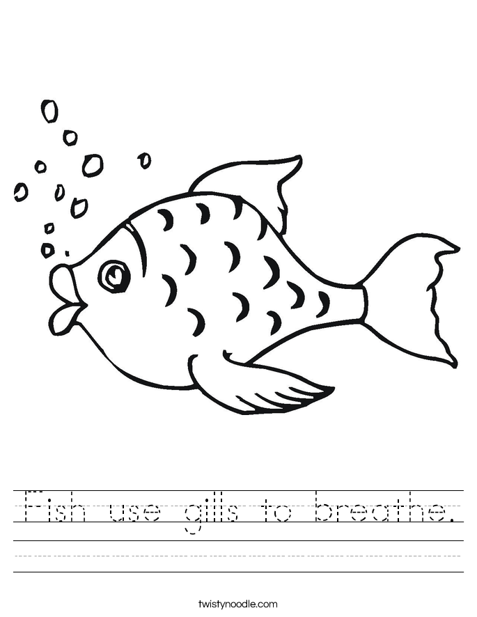 Fish use gills to breathe. Worksheet