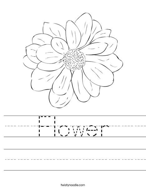 Color by Number Flower   Worksheet   Education.com