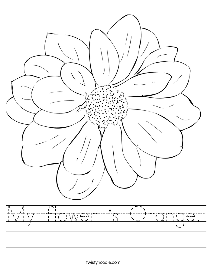My flower is Orange Worksheet - Twisty Noodle