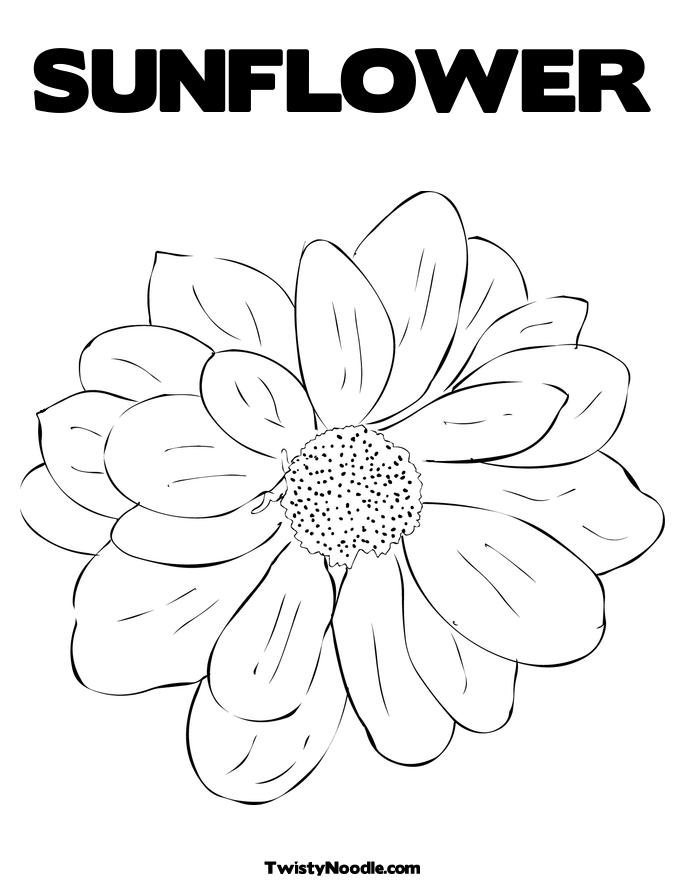 sunflower in vase colouring pages page 2