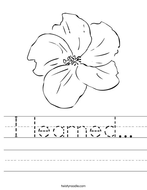 I Love Flowers Worksheet