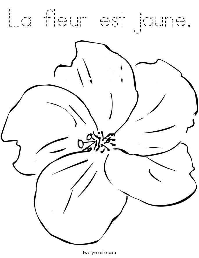 La fleur est jaune. Coloring Page