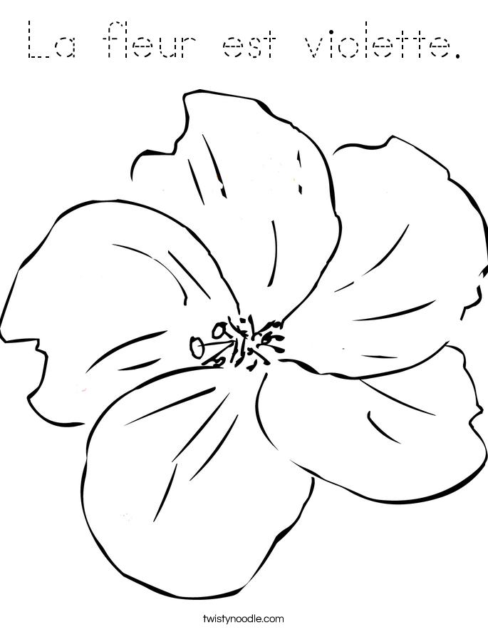 82+ [ Coloring Page Violet Flower ] - African Violets ...