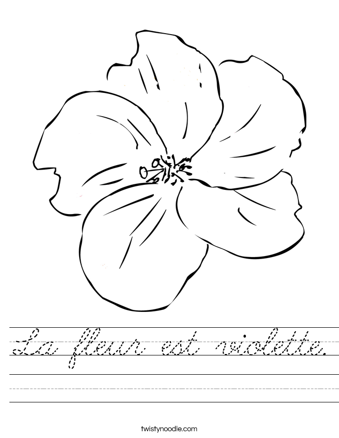 La fleur est violette. Worksheet