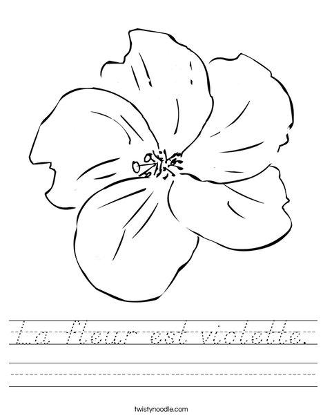 I Love Flowers Worksheet