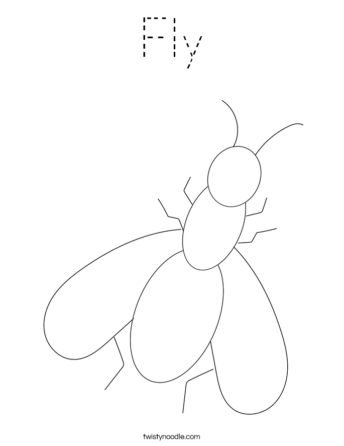 Fly Coloring Page - Tracing - Twisty Noodle