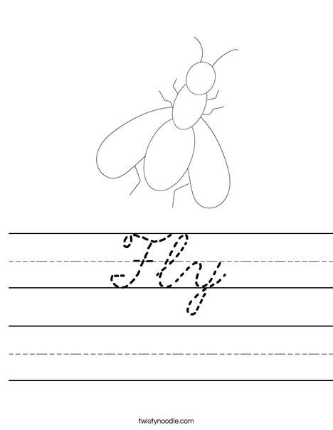 Fly Worksheet
