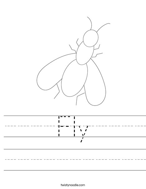 Fly Worksheet