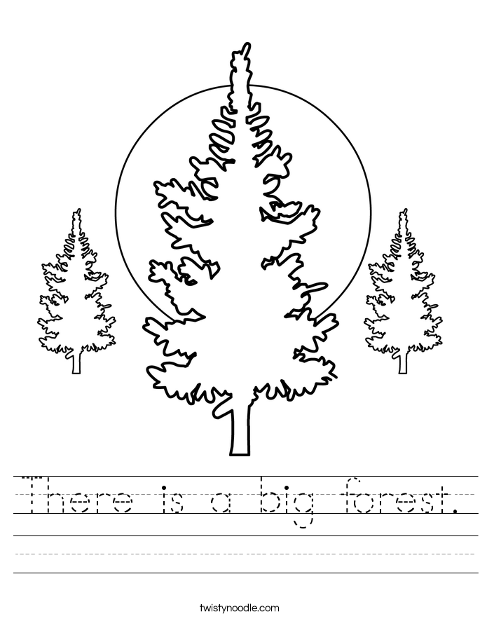 There is a big forest. Worksheet
