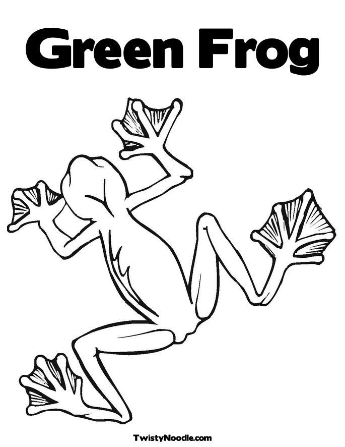 tree frog coloring page. Tree Frog Coloring Page.