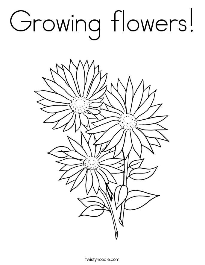 Growing Plants Coloring Page Pictures to Pin on Pinterest