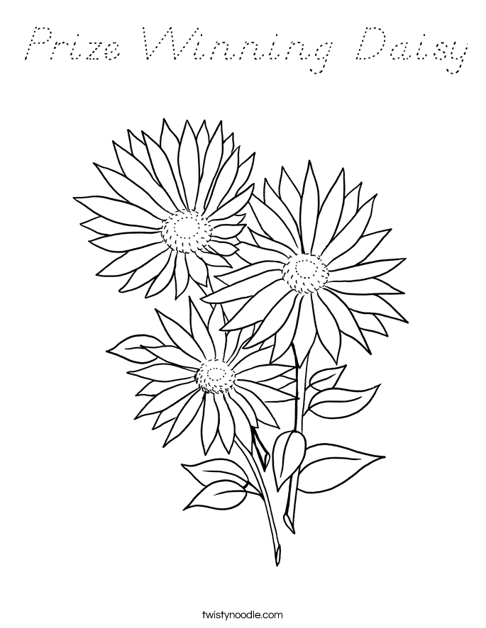 Prize Winning Daisy Coloring Page